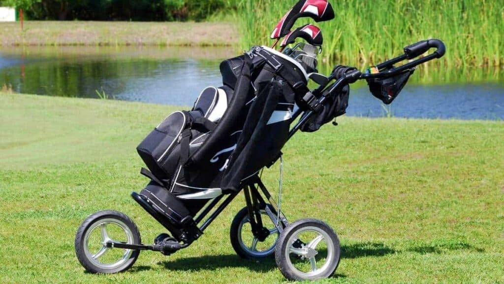 What is the best golf cart bag for the money
