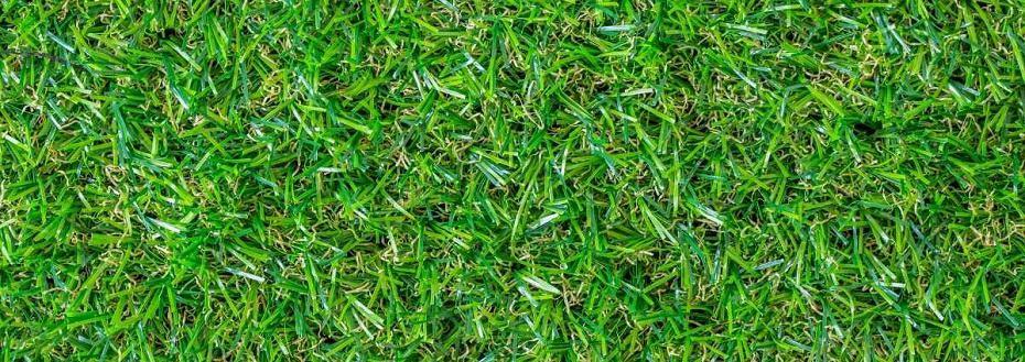 golf holes for backyard